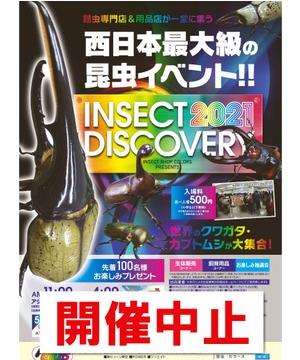 【開催中止】INSECT DISCOVERY 2021
